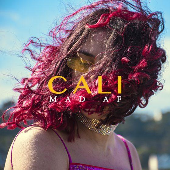COVER CALI6